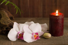Zdroju pojęcie z świeczki i orchidei abstrakta wciąż życiem Zdjęcia Stock