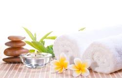Zdroju pojęcie z zen kamieniami i kwiatami Obrazy Stock