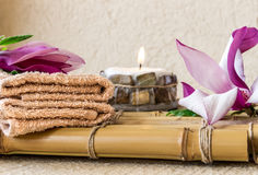 ZDROJU skład z magnolią Zdjęcia Stock