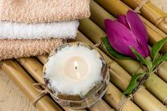 ZDROJU skład z magnoliową skóry opieką Zdjęcie Royalty Free
