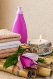 ZDROJU skład z magnoliową skóry opieką Zdjęcia Royalty Free