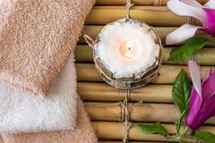 ZDROJU skład z magnoliową skóry opieką Zdjęcia Stock