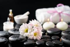 Zdroju tło biała stokrotka kwitnie, świeczki, woń olej, c zdjęcia stock