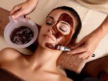 Zdroju terapia dla kobiety odbiorczej kosmetyka maski Zdjęcia Stock