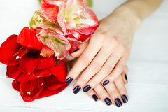 Zdroju traktowanie dla kobiet ręk z czerwonymi kwiatami Fotografia Royalty Free