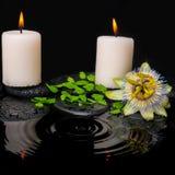 Zdroju wciąż życie passiflora kwiat, zielona liść paproć z kroplą Obrazy Stock