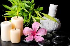 Zdroju wciąż życie różowy poślubnika kwiat, gałązka bambus, tajlandzki ziołowy Obrazy Stock