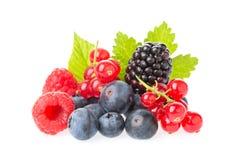 Zdrowa świeża żywność jagod grupa Makro- strzał świeże malinki, czarne jagody, czernicy, czerwony rodzynek i czernica z leav, zdjęcia stock
