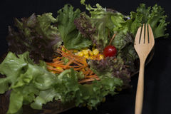 zdrowa żywność Czyści jedzenie, Świeża zielona sałatka na czarnym tle Zdjęcie Stock