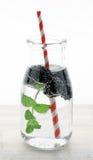 Zdrowa detox woda z owoc Obraz Royalty Free