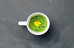 zdrowa filiżanki herbata Zdjęcie Royalty Free