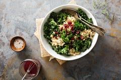 Zdrowa kale i quinoa sałatka fotografia stock