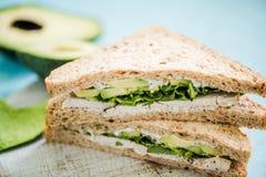 Zdrowa kanapka z avocado i kurczakiem Obraz Stock