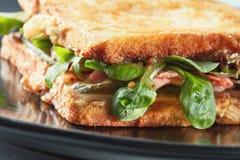 Zdrowa kanapka z bekonem Zdjęcie Stock