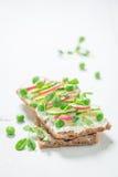 Zdrowa kanapka z chlebem, fromage serem i avocado crunchy, Obraz Stock