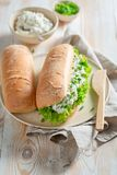 Zdrowa kanapka z chlebem, fromage serem i szczypiorkiem crunchy, Fotografia Royalty Free
