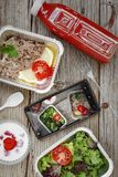 Zdrowa karmowa dostawa Pojęcie: Właściwy odżywianie, catering, biznesowy lunch Smartphone, zdrowotny jedzenie, rozporządzalny zdjęcie royalty free