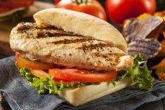Zdrowa Piec na grillu kurczak kanapka Fotografia Royalty Free