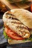 Zdrowa Piec na grillu kurczak kanapka Zdjęcie Stock