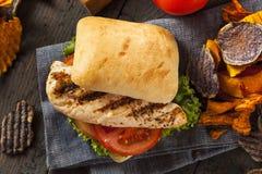Zdrowa Piec na grillu kurczak kanapka Obrazy Royalty Free