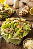 Zdrowa Piec na grillu kurczaka Caesar sałatka Fotografia Royalty Free
