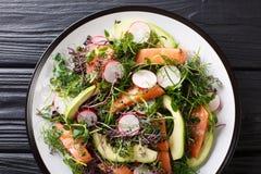 Zdrowa sa?atka ?oso?, avocado, rzodkiew i microgreen mieszank? w g zdjęcia stock