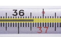 zdrowa temperatura Obraz Stock