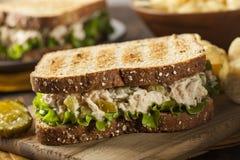 Zdrowa tuńczyk kanapka z sałatą Obrazy Stock