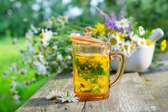 Zdrowa ziołowa herbaciana filiżanka, moździerz leczniczy ziele i stokrotek leczniczy ziele Fotografia Stock