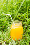 zdrowe życie Energia od natury Ekologiczny mangowy sok fotografia royalty free