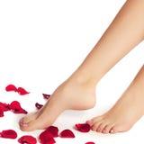 Zdrowe kobiet nogi biały odosobnione nogi Piękna kobieta le Fotografia Royalty Free