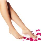 Zdrowe kobiet nogi biały odosobnione nogi Piękna kobieta le Zdjęcia Royalty Free