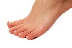 Zdrowe kobiet nogi biały odosobnione nogi Piękna kobieta le Zdjęcie Royalty Free