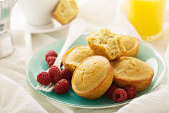 Zdrowego glutenu quinoa bezpłatni muffins Fotografia Stock