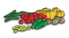 2 zdrowej żywności Zdjęcie Royalty Free
