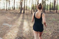 Zdrowej stylu życia brunet sprawności fizycznej kobiety biegacza sporty bieg w sosnowym ranku lesie fotografia royalty free