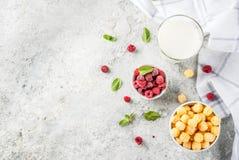 Zdrowi Śniadaniowi składniki Fotografia Royalty Free