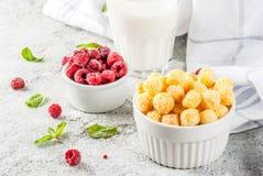 Zdrowi Śniadaniowi składniki Zdjęcie Stock