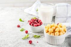 Zdrowi Śniadaniowi składniki Obraz Stock