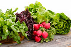 Zdrowi świezi sałatkowi składniki fotografia royalty free