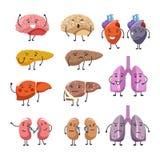 Zdrowi i gęści organy z ilustracja wektor