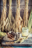 Zdrowi składniki dla chleba i rolek z całymi adra Obrazy Royalty Free