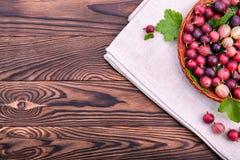 Zdrowi, soczyści i dojrzali barwiący agresty z zielonymi liśćmi w brown koszu na ciemnym drewnianym stole, Obrazy Stock