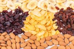 Zdrowi wysuszeni składniki zawiera kopaliny, węglowodany i żywienioniowego włókno, odżywczy łasowania pojęcie Obrazy Stock
