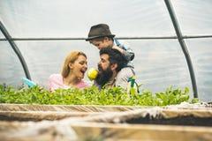 Zdrowie i ekologia zdrowie rodzina w ekologia świacie zdrowie i ekologii pojęcie zdrowie i ekologia młoda rodzina zdjęcia royalty free