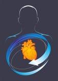 Zdrowie serce Fotografia Royalty Free