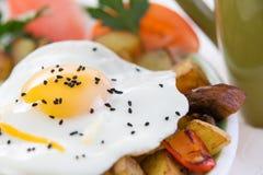 Zdrowotny posiłek smażący warzywa i jajko obraz stock