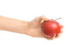 Zdrowy łasowania i diety temat: ludzka ręka trzyma czerwonego jabłka odizolowywający na białym tle w studiu Fotografia Stock