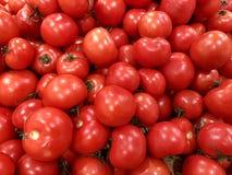 Zdrowy łasowania i jarosza karmowy pojęcie - zamyka w górę słodkich czerwonych pomidorów obraz royalty free
