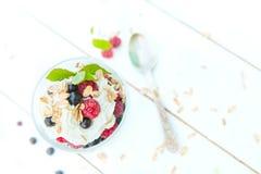 Zdrowy śniadanie: płatowaty deserowy jogurtu parfait z świeżymi malinkami i czarnym rodzynkiem na drewnianym stole nad ogródem obrazy stock